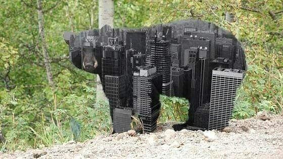 A city bear