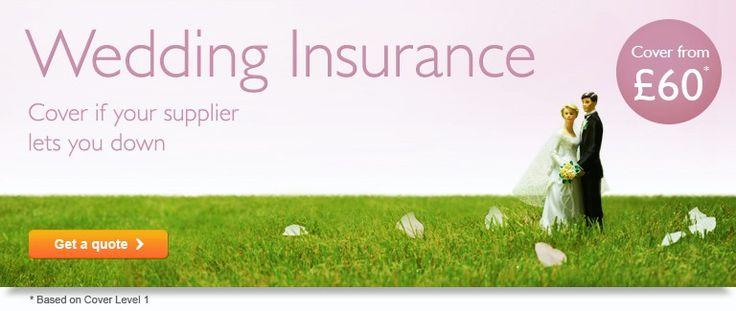 John Lewis Pet Insurance: 20% online discount
