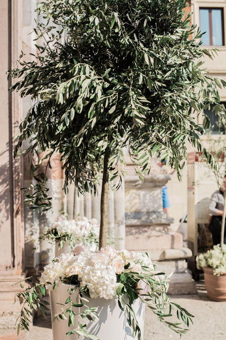 Segnaposto Matrimonio Tema Ulivo : Le nozze a tema ulivo organizzazione matrimonio forum