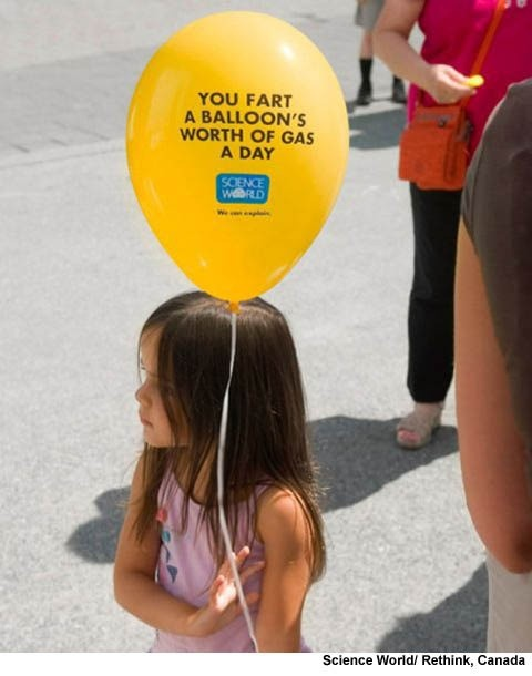One day recommended fart allowance  14 times a day!!! (scienceworld)