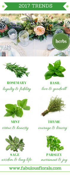 2017 Spring Flower trends! Fresh Herbs & their meanings chart.  Your #1 source for wholesale DIY wedding flowers! #herbs #diyflowers #weddingflowers #weddinggreenery #weddingtrends #greenery