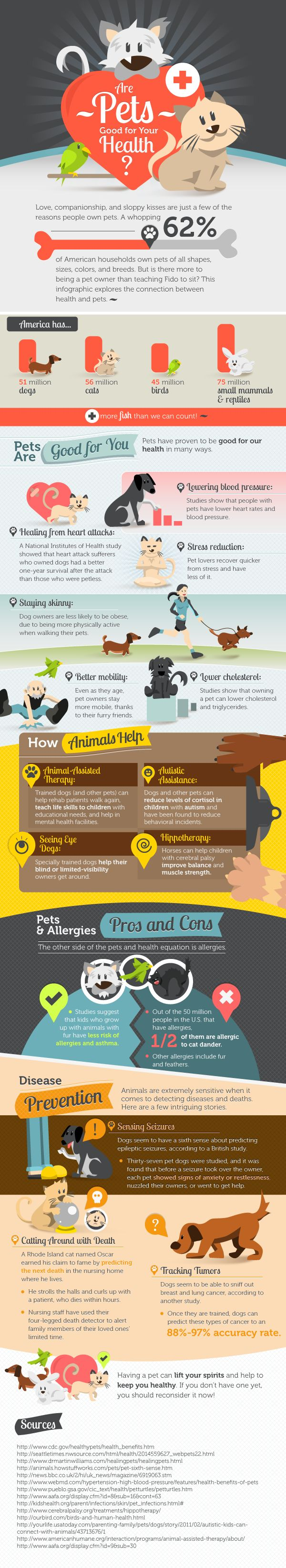 In honor of national dog day (August 26, 2014) check out this infographic about the benefits of pet ownership