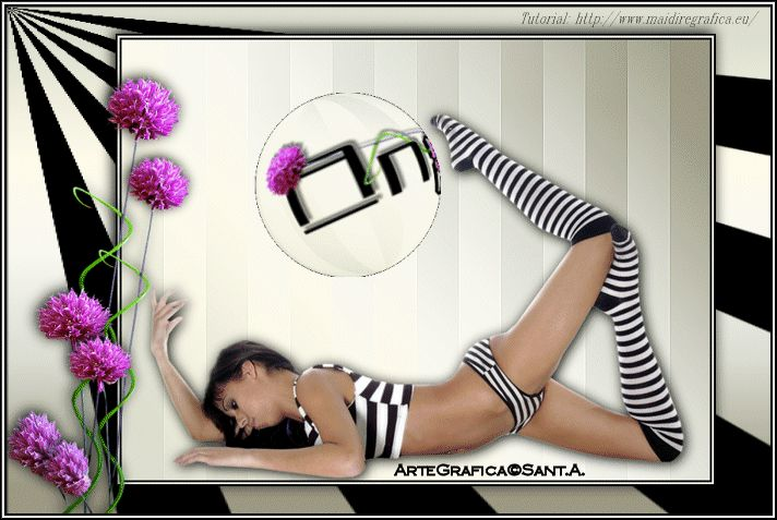 http://www.angelasantoro.com/BRI/Ball.gif