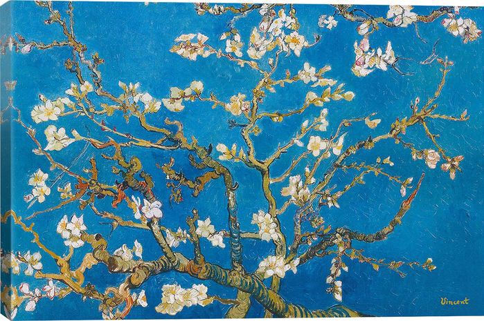 Almond Blossom by Van Gogh Canvas Print