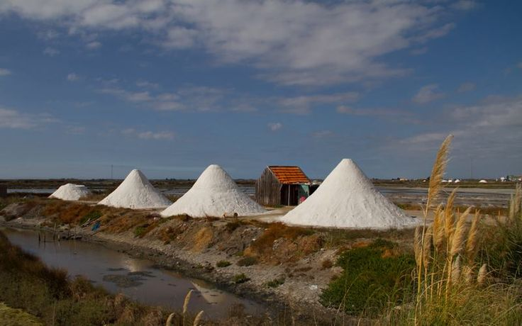Salt saline- AVEIRO