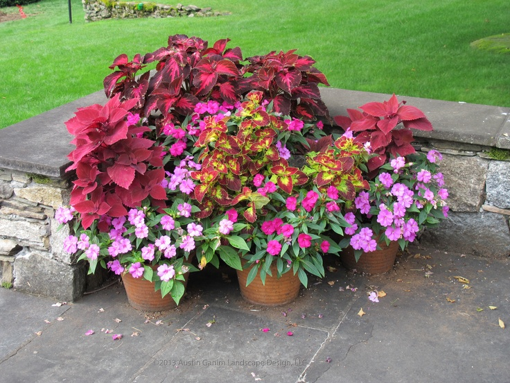 Traditional Landscape Design Ideas, Pictures, Remodel And Decor