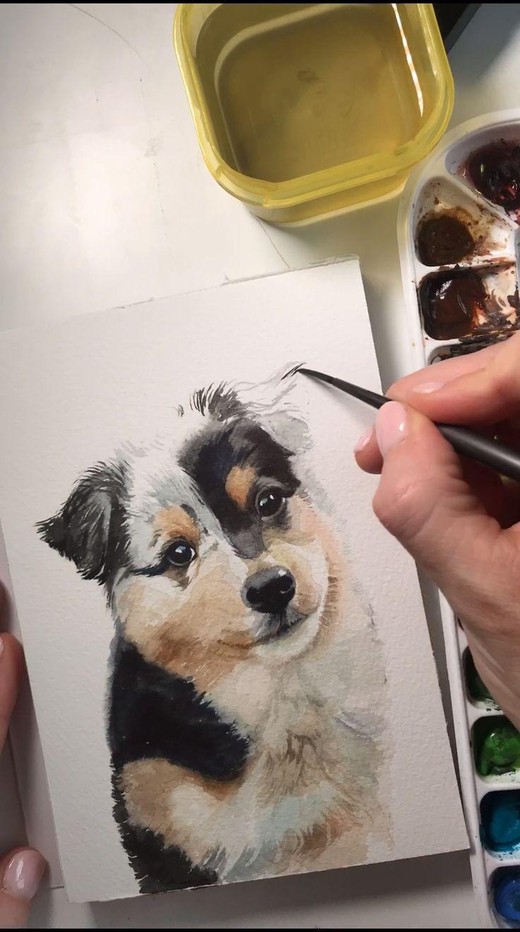 Australian Shepherd puppy watercolor timelapse