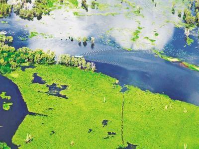 ユネスコの「自然遺産」と「文化遺産」を兼ね備えた「複合遺産」に登録されているカカドゥ国立公園。オーストラリア最初で最大の国立公園です。