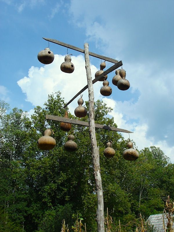 how to hang gourd   Building the Traditional Birdhouse   Building or Making   Farm Hand's ...
