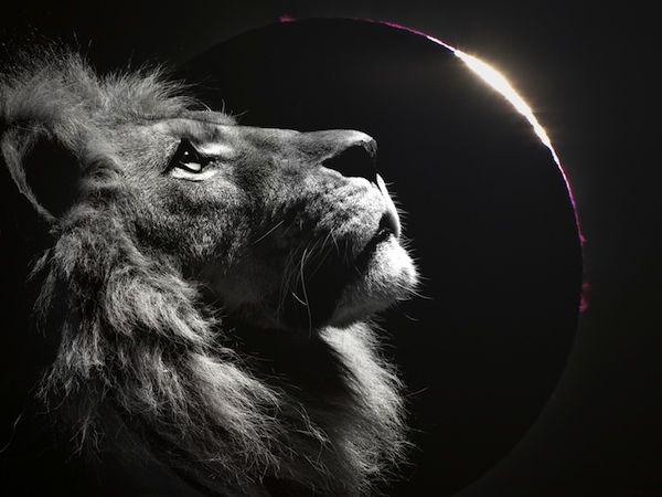 Total solar eclipse 2013 | GLORIA Project