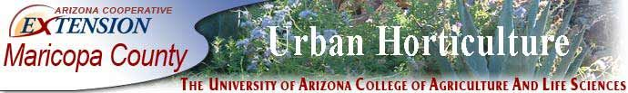 Master Gardener Maricopa County: most every county has their own master gardener you can search to find yours. They offer free clinics on gardening, tons of information and links from local garden clubs to how to get grants or free seeds to plant a garden