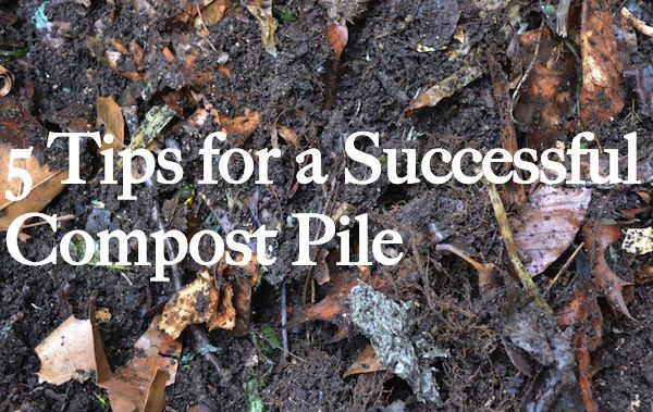 5 Tips for a Successful Compost Pile this Fall