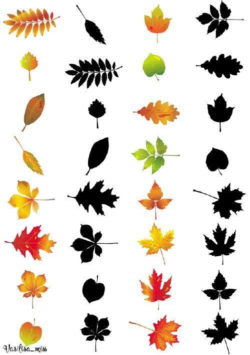 Найди тень - Осенние листья
