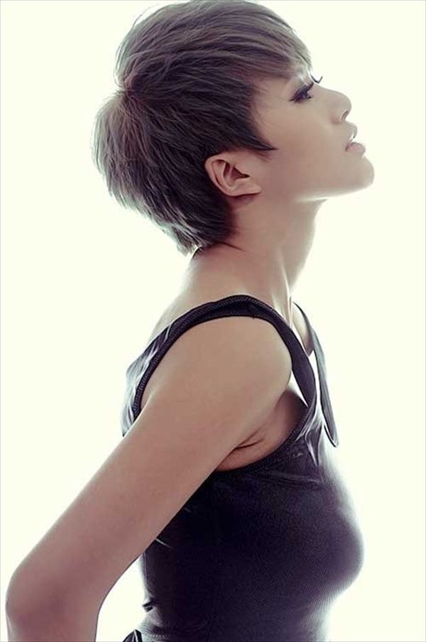 Stupendous 1000 Images About Hair On Pinterest Shaggy Pixie Cuts Pixie Hairstyles For Men Maxibearus