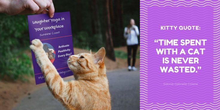 #catquote #cat #positivity #laughter #humour