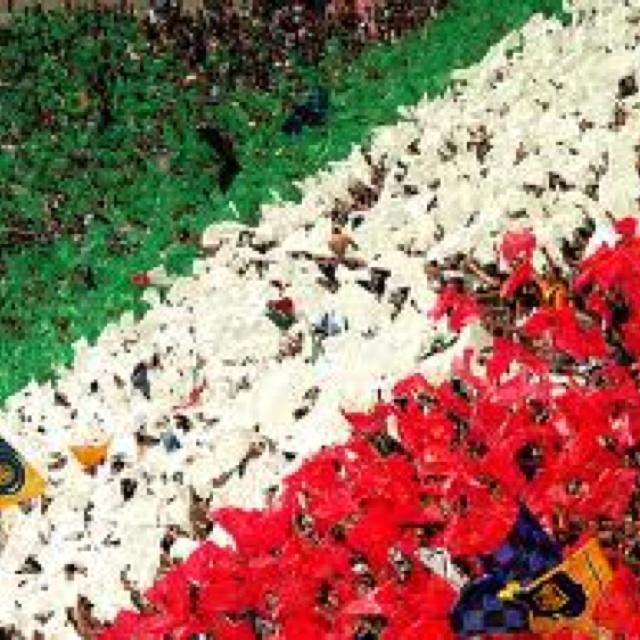 Italia: passione