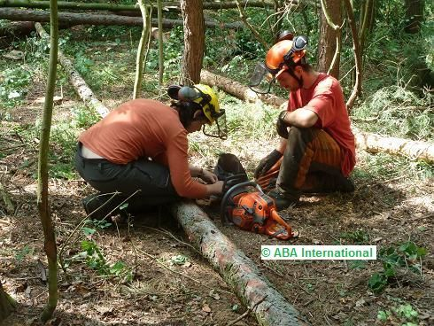 ICC1 www.aba-skills.com