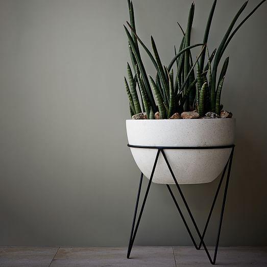 Iris Planter, Chevron Stand | West Elm | Green plants to soften black/white interior