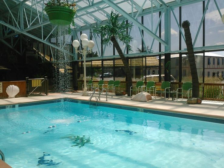 Wildwood Inn Tropical Dome Themed Suites Only Found In Florence Ky 859 371