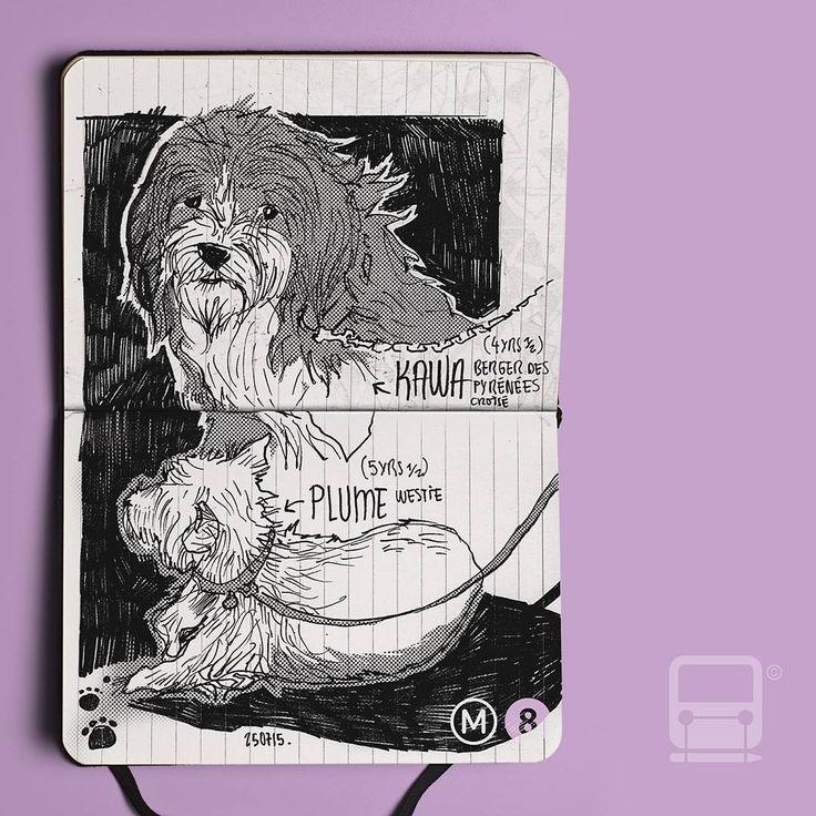 Plume et Kawa nous accompagnent parfois dans le métro le weekend  Samedi 25 Juillet Métro Ligne 8 - Paris Pentel Tradio - A6 #⃣ #ratp #métro #paris #metroparis #doodle #moleskine #navigo #usk #plume #kawa #instadog #westie @la_princesse_aux_petits_chiens