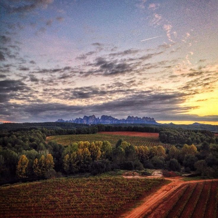 Looking across to Montserrat from the castle at Oller del Mas Winery - Manresa, Catalonia.