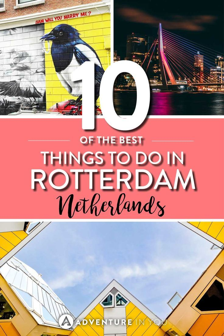 Rotterdam Netherlands   Looking for inspiration on the best things to do in Rotterdam? Our local guide gives us tips on the best things to see, where to eat, and the best attractions to see.