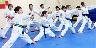 Image result for karate class