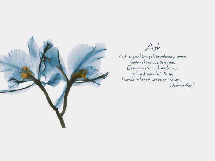 Resimli Özdemir Asaf Sözleri - Orjinal Sözler- En Güzel Sözler