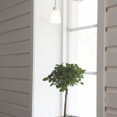 Inconspicuous window lamp in white glass and metal base gives attention to your plants // Titus - Sessak