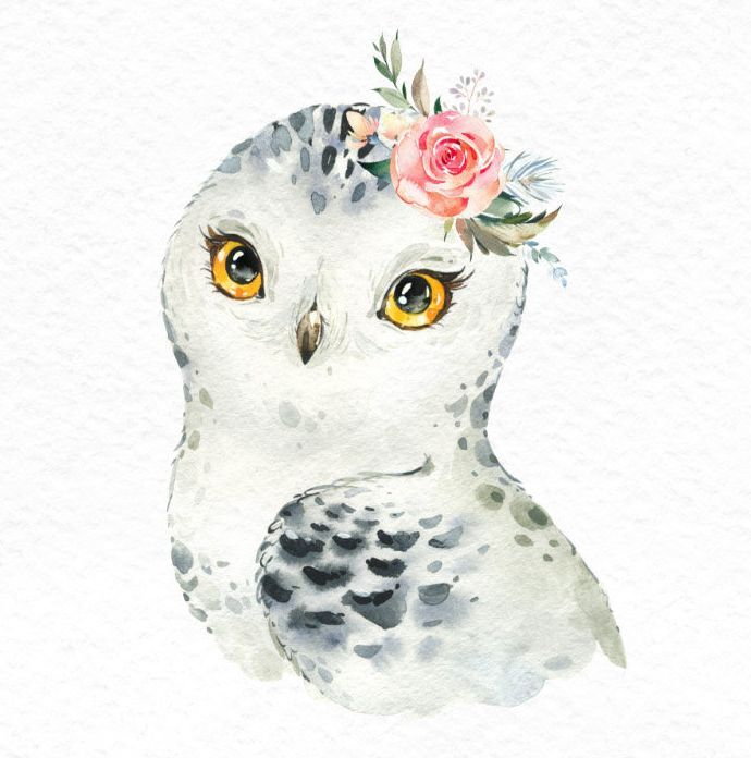 Snowy Reindeer White Owl Seal Watercolor Little Animals Clipart