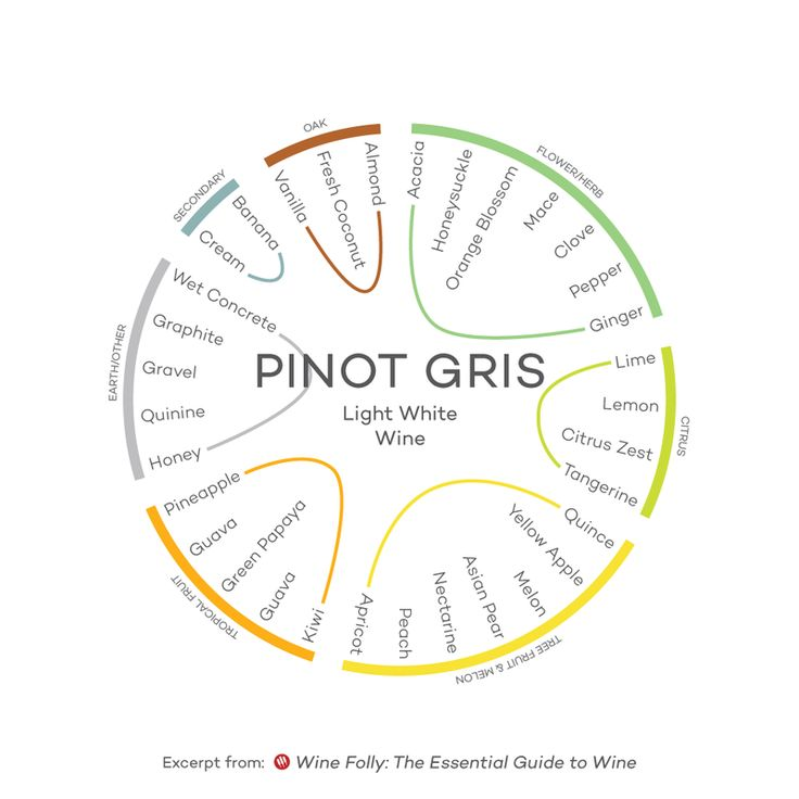 The Guide to the 9 Styles of Wine (with Infographics)