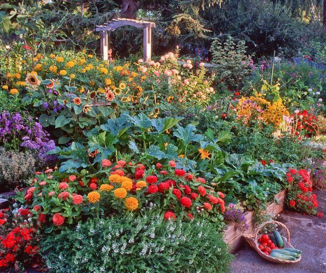 65 Best Potager Gardens Images On Pinterest: 690 Best Beautiful Vegetable Gardens Images On Pinterest