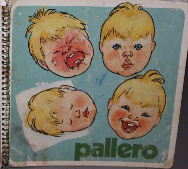 Pallero kirja tuli äitiyspakkauksen mukana v.1979?