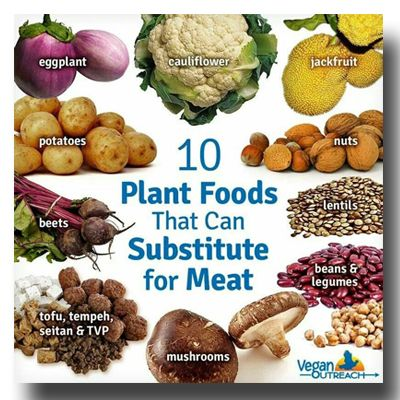 10 plant foods that can substitute for meat #plantbased diet