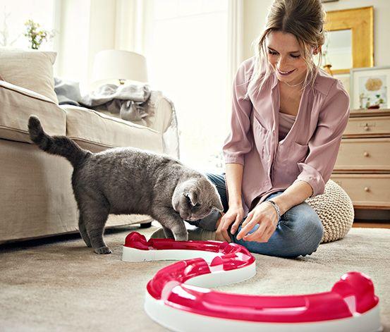 #Tor wyścigowy-zabawka dla #kota #tchibo