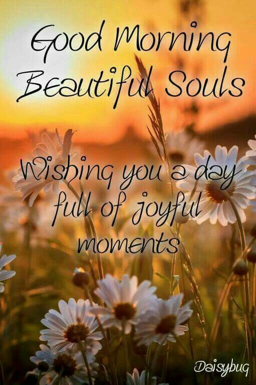 Goodmorning Quotes 477 Best Good Morning Quotes Images On Pinterest  Morning Quotes .