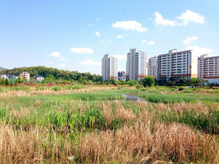 천안, 날씨 좋다 :)
