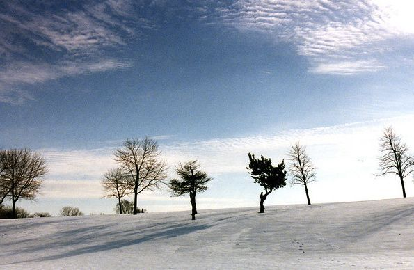 winter solstice.  Be sure to look at your noontime shadow. Around the time of the December solstice, it's your longest noontime shadow of the year.