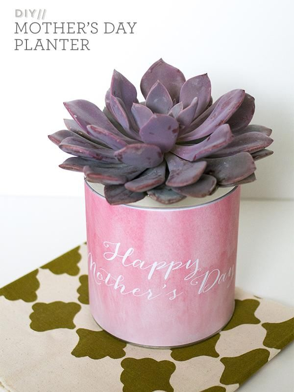 DIY Mother's Day : DIY Mother's Day Planter Gift