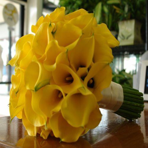 yellow wedding boquets | YELLOW BRIDAL BOUQUETS : Terra Flowers Miami - Wedding Florists ...