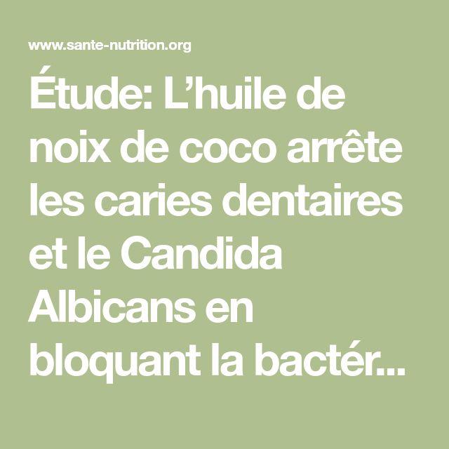 Étude: L'huile de noix de coco arrête les caries dentaires et le Candida Albicans en bloquant la bactérie Streptococcus Mutans - Santé Nutrition