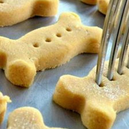 Cleo's Pumpkin Dog Biscuits Recipe | Key Ingredient