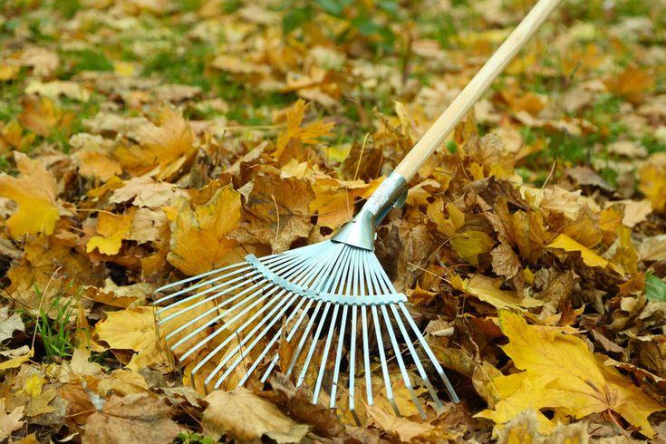 Gartenzauber   Laubkompost – die clevere Art Laub zu nutzen - Gartenzauber