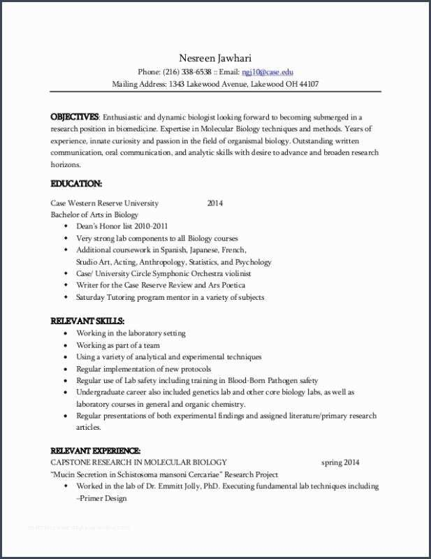 53 What A Resume Should Look Like