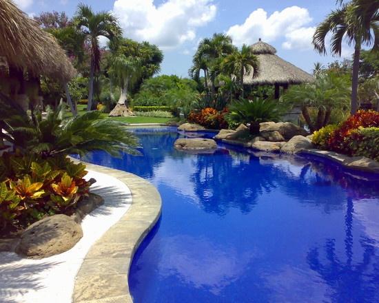 121 best Backyard Paradise images on Pinterest | Dream pools ...