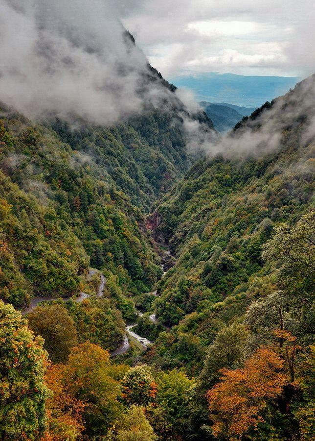 Georgia. Caucasus by Alexander Deshkovets on 500px