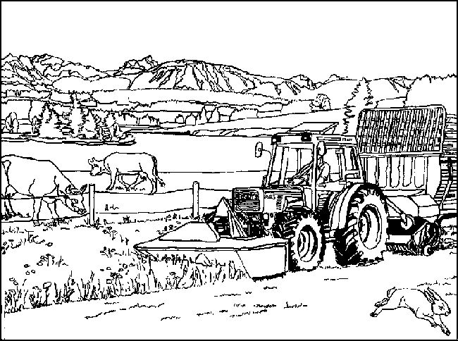 best 20 farm coloring pages ideas on pinterest farm party kids felt farm animals pattern and. Black Bedroom Furniture Sets. Home Design Ideas