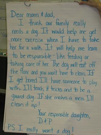 i want an iguana persuasive writing - Google Search