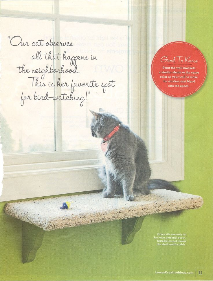 Lowes Creative Ideas - July/August 2009 Kitty Kingdom....custom window seat is…