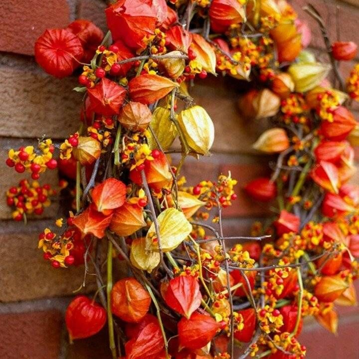 couronne de porte automnale - déco d'automne en branchettes de baies rouges et physalis